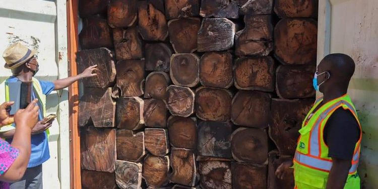 13 containers of Rosewood impounded at Tema Port